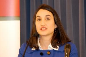 Sara Moscato Howe, CEO, IADDA